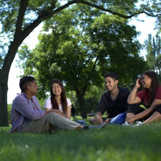 Four students sit in a semi-circle, laughing and chatting, on a lawn on UIC's campus